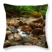 Woodland Waters Throw Pillow