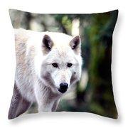 Woodland White Wolf 2 Throw Pillow