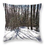 Woodlot Road Throw Pillow