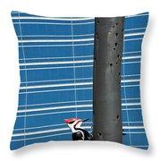 Woodpecker Column Throw Pillow
