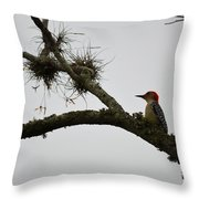 Woodpecker On Lookout Throw Pillow