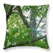 Woodpecker Tree Art Throw Pillow