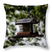 Woodpeckers At Dinner Throw Pillow