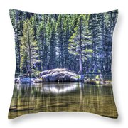 Woods Lake 1 Throw Pillow