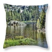 Woods Lake 2 Throw Pillow