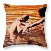 Woodstock Cover 2 Throw Pillow