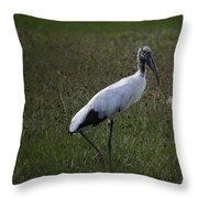 Woodstork In Field Throw Pillow