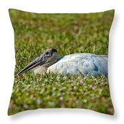 Woodstork Lazing In The Park Throw Pillow