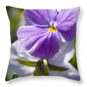 Woodward Pansy Throw Pillow