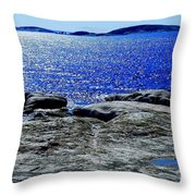 Woody's Island Throw Pillow