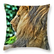 Woolly Mane Of The King   Throw Pillow