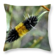 Woolly Worm In Yellowstone National Park Throw Pillow
