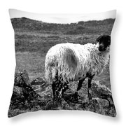 Wooly Goat Throw Pillow