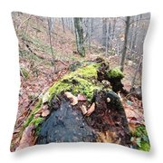 Woow Nature Throw Pillow