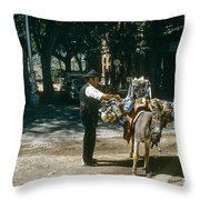 Working Buddies Throw Pillow