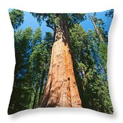 World Famous General Sherman Sequoia Tree In Sequoia National Park. Throw Pillow