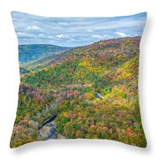 Worlds End State Park Lookout Throw Pillow