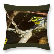 Worm For Breakfast Throw Pillow