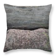 Worm Wood And Granite Throw Pillow