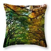 Wormsloe Plantation Throw Pillow