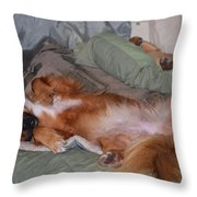 Worn Out Throw Pillow