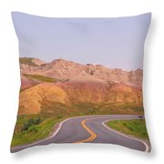 Would You Really Want To Go Faster Throw Pillow