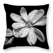 Wounded White Magnolia Wide Version Black And White Throw Pillow