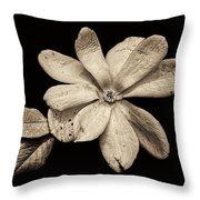 Wounded White Magnolia Wide Version Sepia Throw Pillow