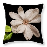 Wounded White Magnolia Wide Version Throw Pillow
