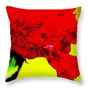 Wow Carnation Throw Pillow