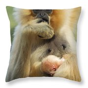Wow. I Have A Baby Throw Pillow