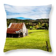 Wow - The Grass Is Greener On The Other Side Throw Pillow