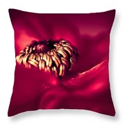 Wrap Me In Red Throw Pillow