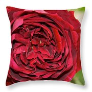 Wrapped Red Throw Pillow