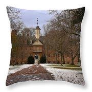 Wren Building In Snow Throw Pillow