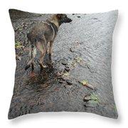 Wrigley Throw Pillow