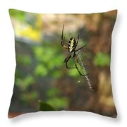 Writing Spider Throw Pillow by Nelson Watkins