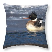 Wsell Rested Redbreasted Throw Pillow