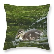 Wye Dale Duckling Throw Pillow