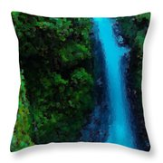 Wyeth Falls Throw Pillow