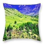 Wyoming Hillside Throw Pillow
