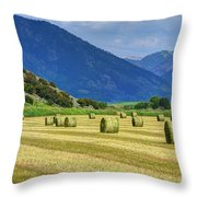 Wyoming Mountain Hay Farm Throw Pillow