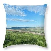 Wyoming Snow Fence Throw Pillow