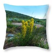 Wyoming Wildflowers Indian Paintflowers Throw Pillow