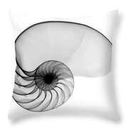 X-ray Of Nautilus Throw Pillow