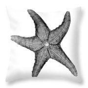 X-ray Of Starfish Throw Pillow