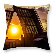 X-ray Vision Throw Pillow