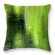 Yamhill River Abstract 24831 Throw Pillow
