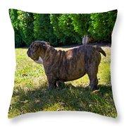 Yard King Throw Pillow