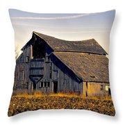 Yarrow Ave Barn 2 Throw Pillow